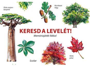 Keresd a levelét! – Memóriajáték fákkal