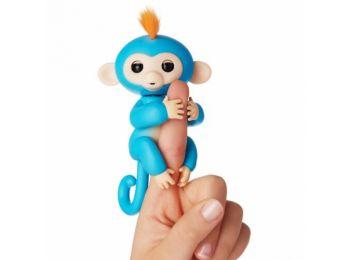 Markoló Maki, a kapaszkodó majombarát - Kék
