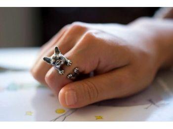Francia bulldog gyűrű