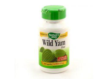 Nature way wild yam 100db
