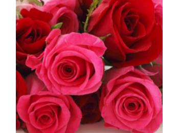 Rózsa parfümolaj 20 ml